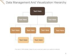 Data Management And Visualization Hierarchy Ppt Background