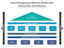 Data Management Maturity Model With Information Architecture