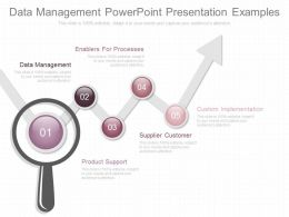 Data Management Powerpoint Presentation Examples