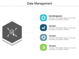 Data Management Ppt Powerpoint Presentation Icon Designs Download Cpb