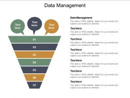 Data Management Ppt Powerpoint Presentation Infographics File Formats Cpb
