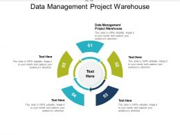 Data Management Project Warehouse Ppt Powerpoint Presentation Icon Elements Cpb