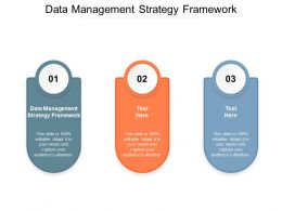 Data Management Strategy Framework Ppt Powerpoint Presentation Pictures Example Cpb