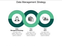 Data Management Strategy Ppt Powerpoint Presentation Infographic Template Graphics Cpb