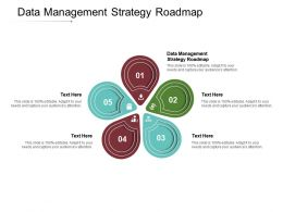 Data Management Strategy Roadmap Ppt Powerpoint Presentation Outline Images Cpb