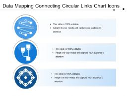 Data Mapping Connecting Circular Links Chart Icons
