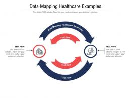 Data Mapping Healthcare Examples Ppt Powerpoint Presentation Infographic Template Gridlines Cpb