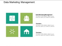 Data Marketing Management Ppt Powerpoint Presentation Gallery Graphics Template Cpb