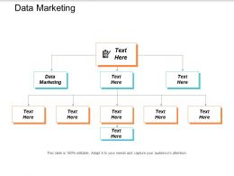 Data Marketing Ppt Powerpoint Presentation Styles Samples Cpb