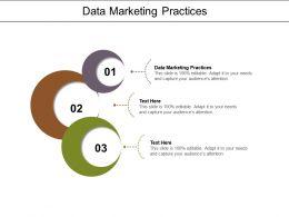 Data Marketing Practices Ppt Powerpoint Presentation Summary Slide Cpb