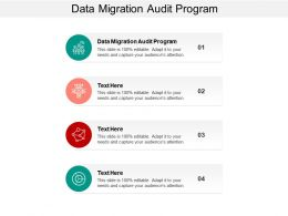 Data Migration Audit Program Ppt Powerpoint Presentation Ideas Slides Cpb