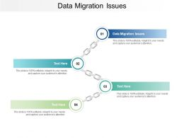 Data Migration Issues Ppt Powerpoint Presentation Inspiration Example Cpb