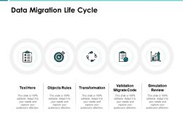 Data Migration Life Cycle Objects Rules Ppt Powerpoint Presentation Show Templates