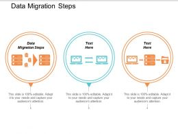 Data Migration Steps Ppt Powerpoint Presentation Styles Show Cpb