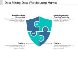Data Mining Data Warehousing Market Segmentation Targeting Positioning Cpb