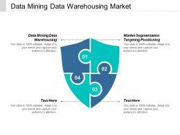 Data Mining Data Warehousing Market Segmentation Targeting Positioning Cpb