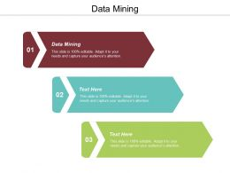 Data Mining Ppt Powerpoint Presentation Ideas Example Cpb