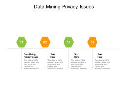 Data Mining Privacy Issues Ppt Powerpoint Presentation Portfolio Maker Cpb