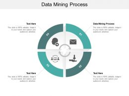 Data Mining Process Ppt Powerpoint Presentation Icon Example Cpb