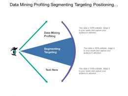 Data Mining Profiting Segmenting Targeting Positioning Differentiating Fulfillment Service