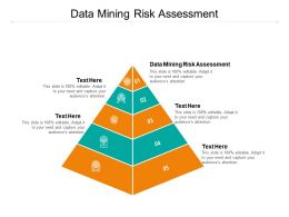 Data Mining Risk Assessment Ppt Powerpoint Presentation Layouts Format Ideas Cpb