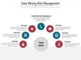 Data Mining Risk Management Ppt Powerpoint Presentation Portfolio Visuals Cpb