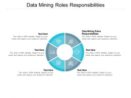 Data Mining Roles Responsibilities Ppt Powerpoint Presentation Model Information Cpb