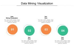 Data Mining Visualization Ppt Powerpoint Presentation Gallery Images Cpb