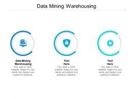 Data Mining Warehousing Ppt Powerpoint Presentation Professional Cpb
