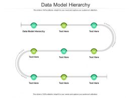 Data Model Hierarchy Ppt Powerpoint Presentation File Graphics Tutorials Cpb