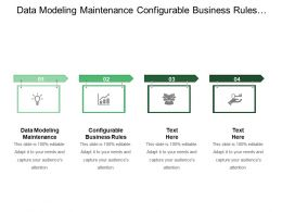 Data Modeling Maintenance Configurable Business Rules Best Practices Implemented