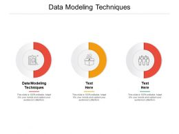 Data Modeling Techniques Ppt Powerpoint Presentation Gallery Shapes Cpb