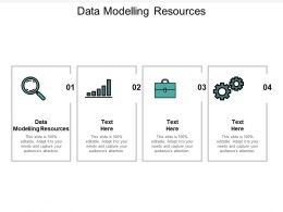 Data Modelling Resources Ppt Powerpoint Presentation File Slide Portrait Cpb
