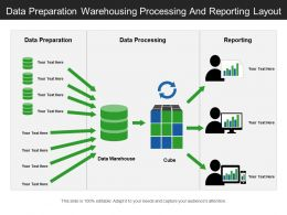 Data Preparation Warehousing Processing And Reporting Layout