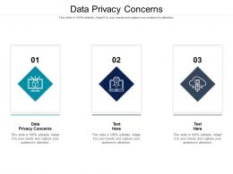 Data Privacy Concerns Ppt Powerpoint Presentation File Graphic Tips Cpb
