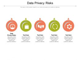 Data Privacy Risks Ppt Powerpoint Presentation Layouts Grid Cpb