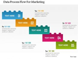 Data Process Flow For Marketing Flat Powerpoint Design