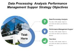 Data Processing Analysis Performance Management Support Strategy Objectives