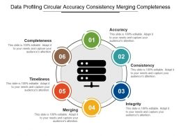 Data Profiling Circular Accuracy Consistency Merging Completeness