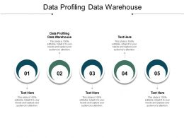Data Profiling Data Warehouse Ppt Powerpoint Presentation Model Themes Cpb