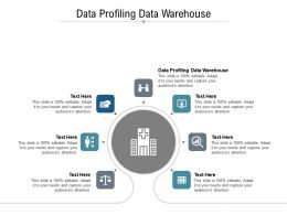 Data Profiling Data Warehouse Ppt Powerpoint Presentation Show Designs Download Cpb