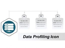 Data Profiling Icon 3