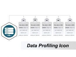 Data Profiling Icon 5
