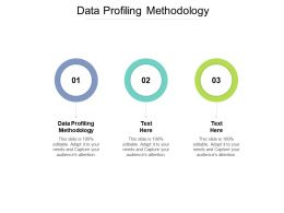 Data Profiling Methodology Ppt Powerpoint Presentation Icon Diagrams Cpb