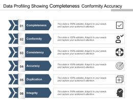 Data Profiling Showing Completeness Conformity Accuracy