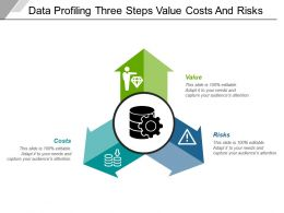 Data Profiling Three Steps Value Costs And Risks