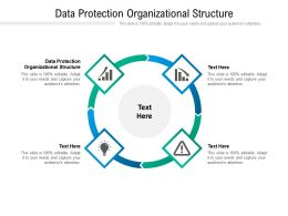 Data Protection Organizational Structure Ppt Powerpoint Presentation Ideas Objects Cpb