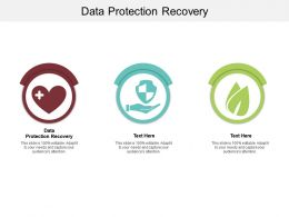 Data Protection Recovery Ppt Powerpoint Presentation Portfolio Templates Cpb