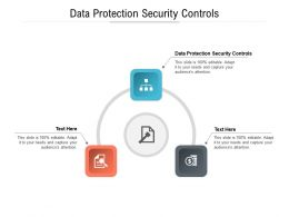 Data Protection Security Controls Ppt Powerpoint Presentation Show Influencers Cpb