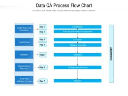 Data QA Process Flow Chart